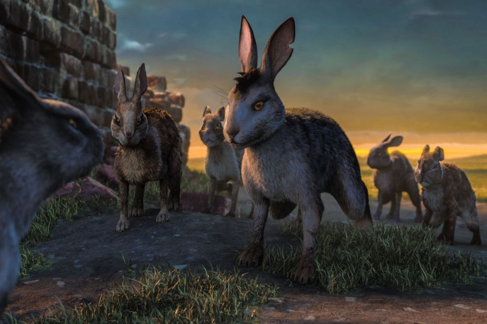 watershipdown_firstlook05.0